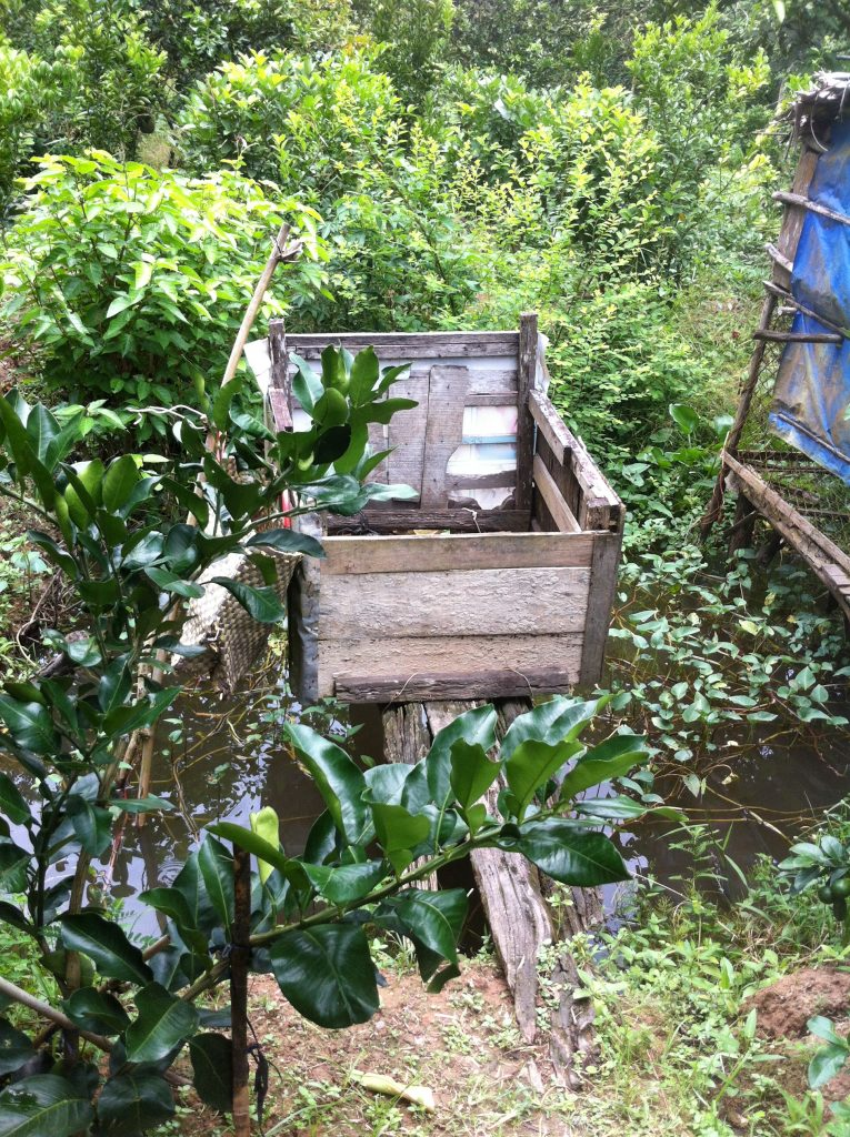 nature-toilet-mytho-tiengiang-thebroadlife-travel-vietnam