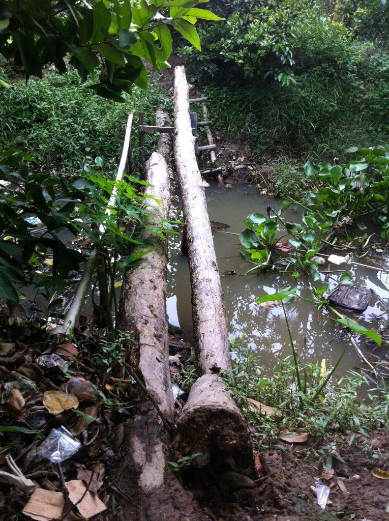 Monkey bridge in My Tho, Tien Giang province
