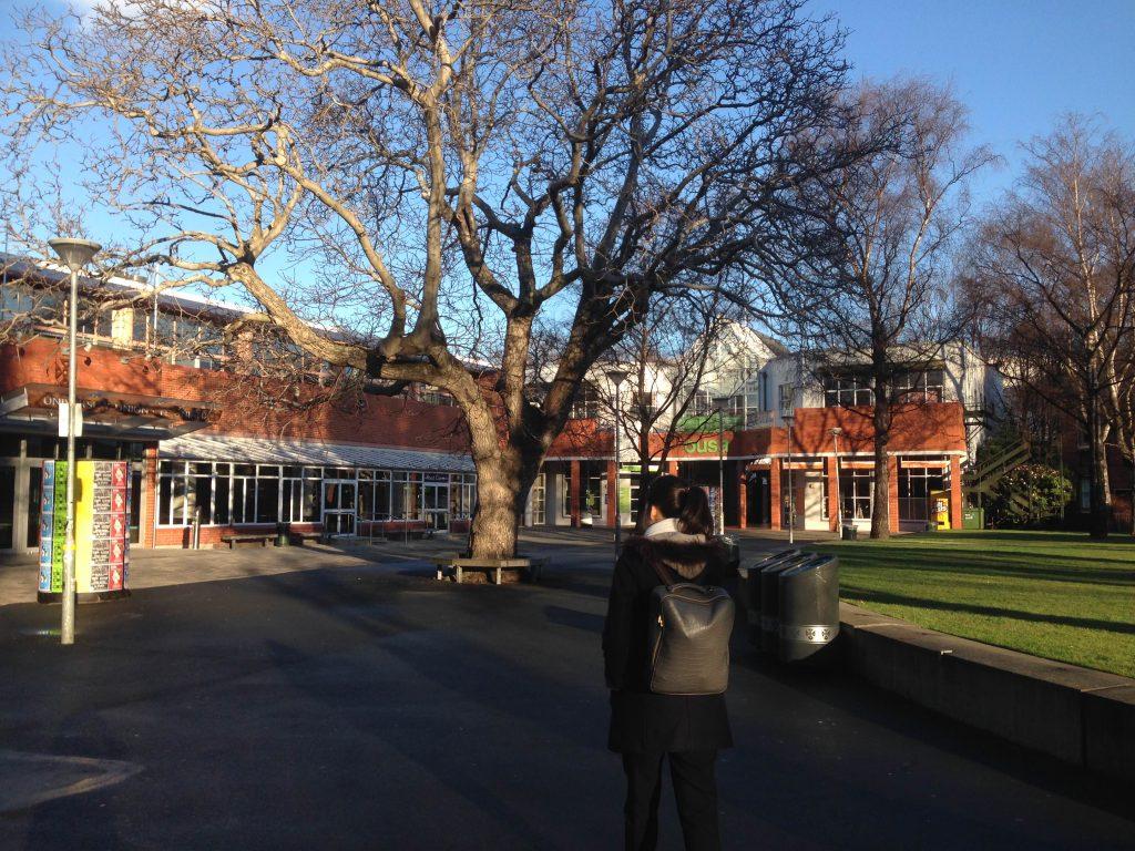 Looking for School of Dentistry in Otago University