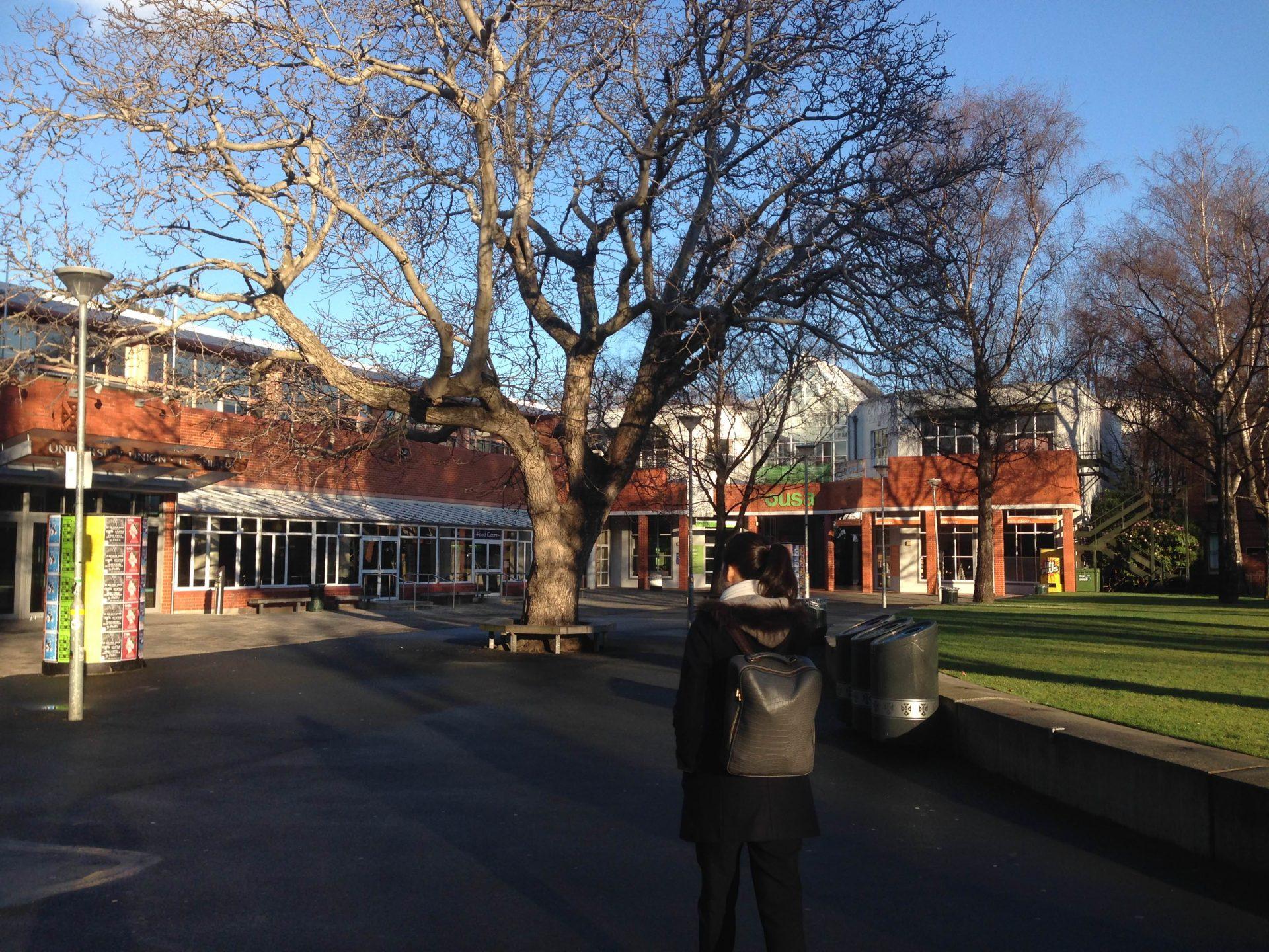 life-dunedin-newzealand-dentistry-thebroadlife-travel