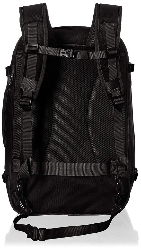 AmazonBasics Travel Backpack