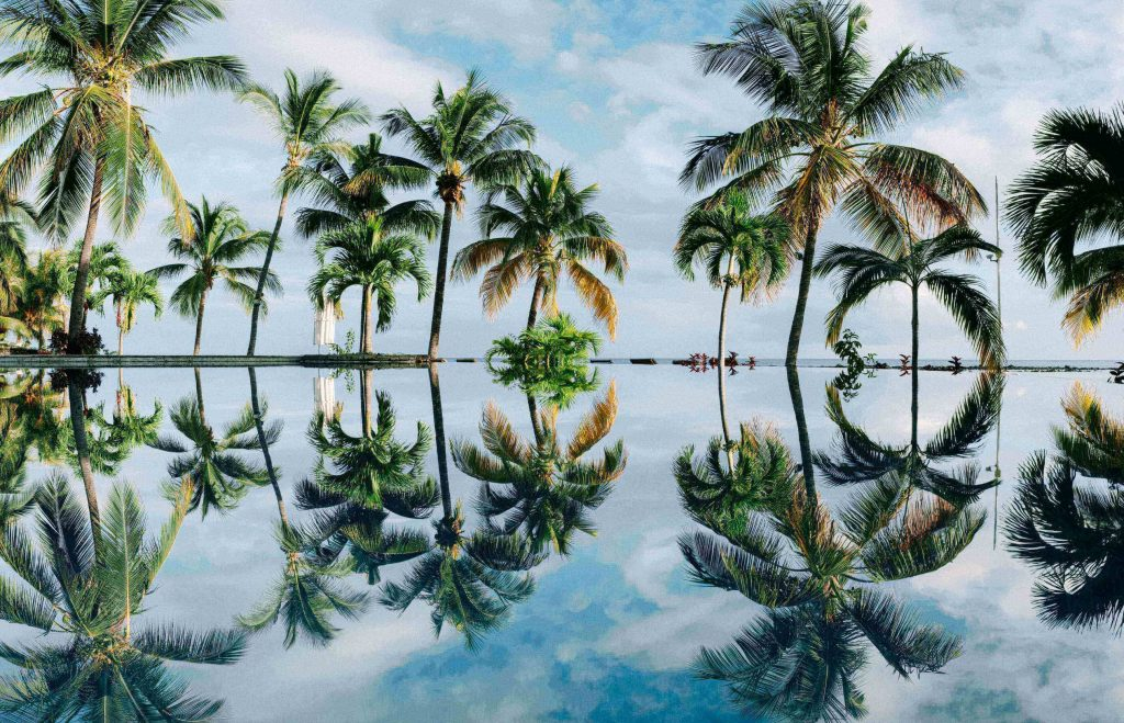 Mauritius is well-known as one of the epic places in the world with beaches, reefs, and hiking trails