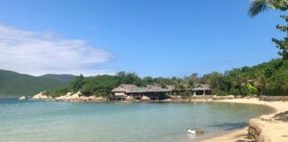 Whale Island resort review