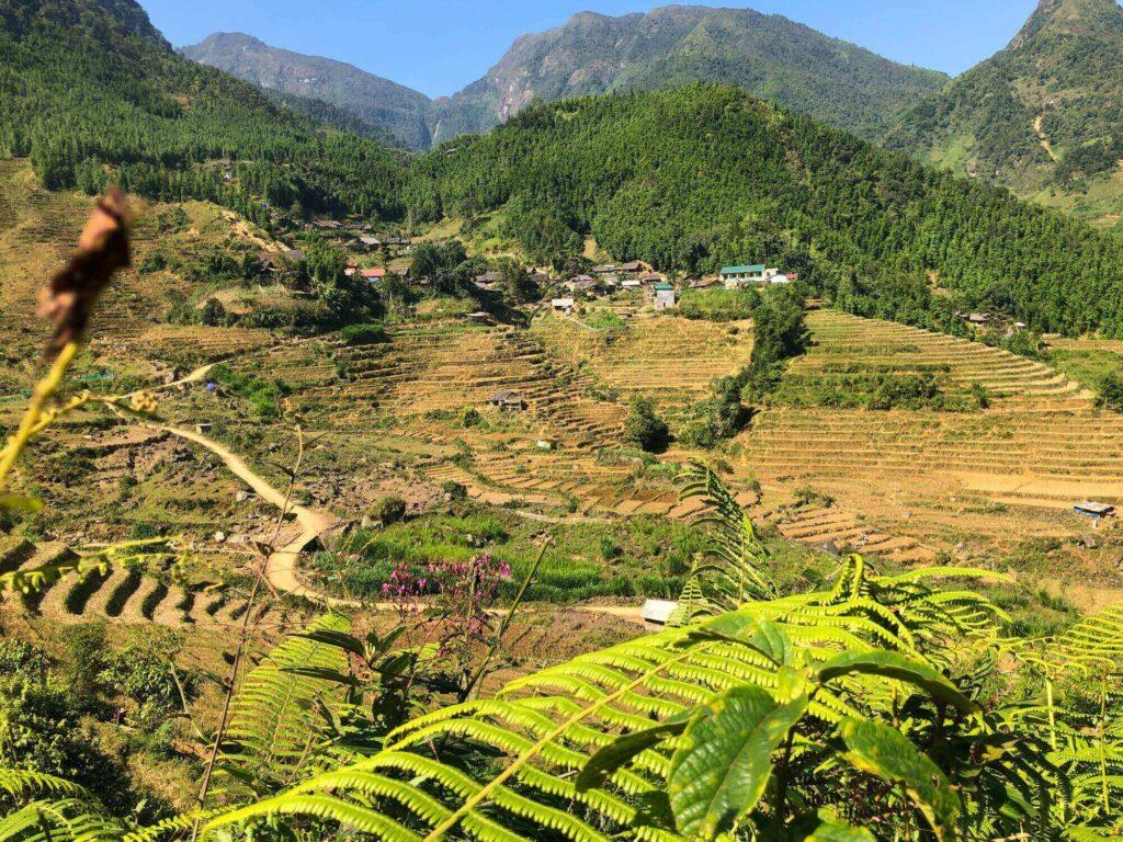 A buffalo slope in Bach Moc Luong Tu trek