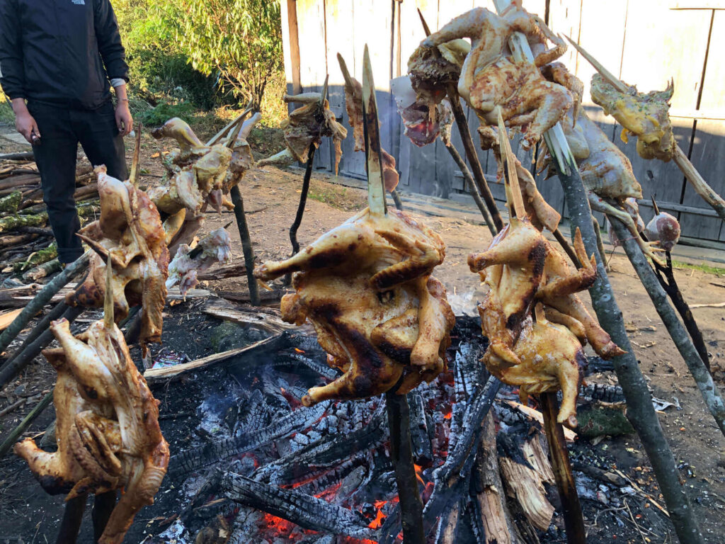 Grilled chicken on the fire camp
