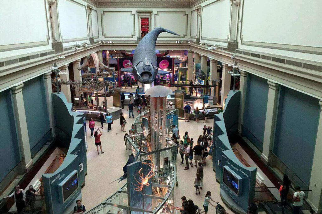Ocean hall at Smithsonian National Museum of Natural History