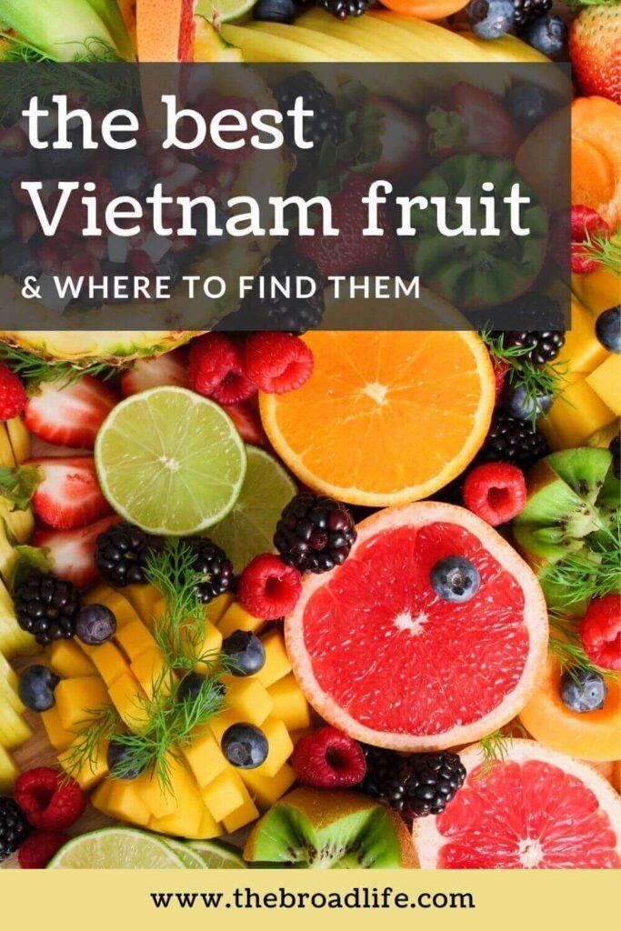 the best vietnam fruit - the broad life's pinterest board