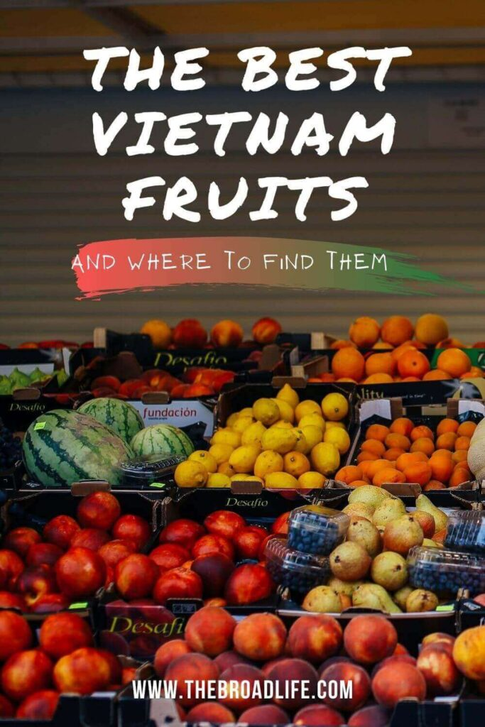 the best vietnam fruits - the broad life's pinterest board